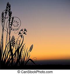 花, 景色, 05