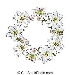 花, 框架, 元素, 裝飾, 白色的百合, 輪