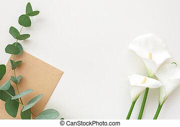 花, 桉樹, 以及, 工藝, 信封, 在懷特上, 背景, 頂部, 觀點。, 地方, 為, 正文