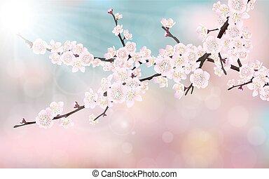 花, 桜の木, ブランチ