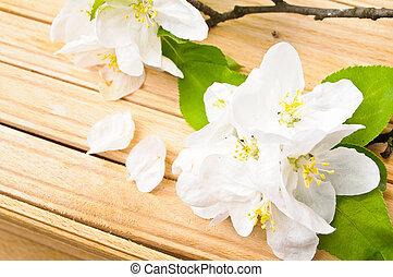 花, 桜の木, 背景, 木製である