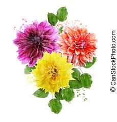 花, 水彩画, イメージ, ダリア