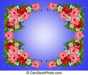 花, 背景, トロピカル