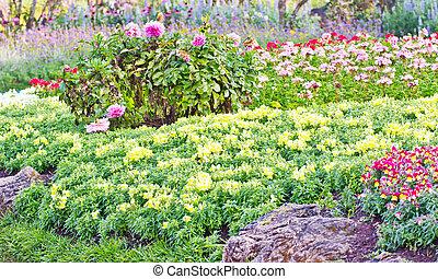 花, 花园