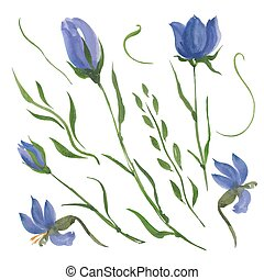 花, 藍色
