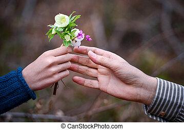 花, 贈り物