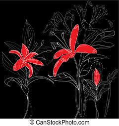 花, 赤い背景, 黒