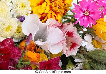 花, arrangement., 背景
