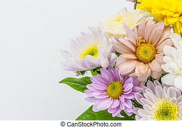 花, ba, カラフルである, 花束, 隔離された, つぼ, 白, 整理