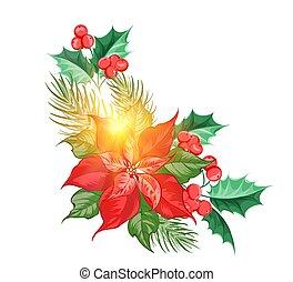 花, decor., simbol, ポインセチア, 休日