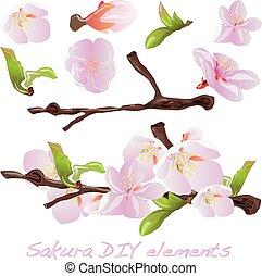 花, sakura, elements.