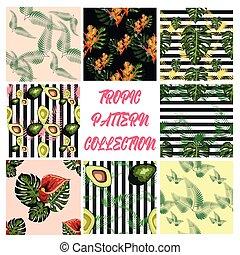 花, seamless, 木, トロピカル, やし, paradis, 葉, 鳥, ハイビスカス, 緑, アボカド, パターン