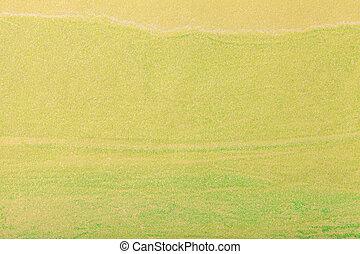 芸術, キャンバス。, 抽象的, color., 多色刷り, 緑の背景, 絵