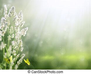 芸術, 夏, バックグラウンド。, 日の出, 上に, ∥, 牧草地