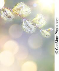 芸術, 春の花, 背景