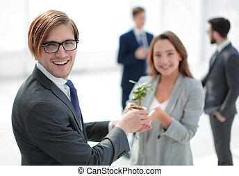 芽, ビジネスマン, 背景, ビジネス チーム