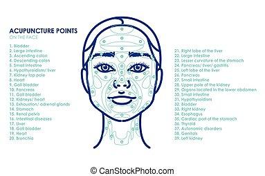 若い女性, face., 刺鍼術, ポイント, ベクトル, 最新流行である, 線, イラスト