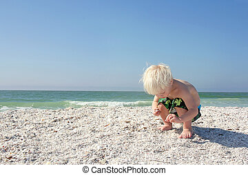 若い, の上, 海洋, 子供, 貝殻, 盗品, 浜