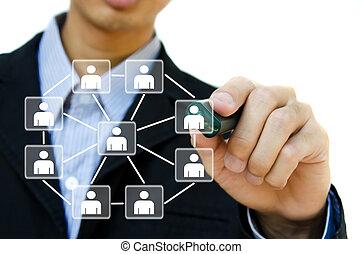 若い, ビジネス, 図画, 社会, ネットワーク, 構造, 中に, a, whiteboard.