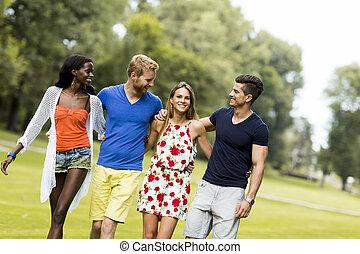 若い, 多人種である, 友人, 公園