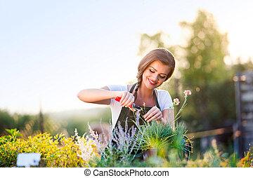 若い, 庭師, 切断, わずかしか, 花, 植物, 緑, 日当たりが良い, 自然