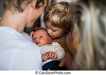 若い, 息子, 生まれたての赤ん坊, 親, 小さい, close-up., よちよち歩きの子, 家