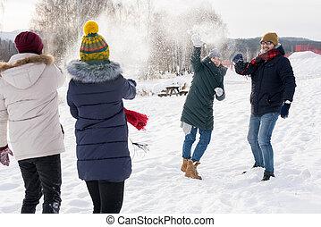 若い, 楽しみ, 持つこと, 冬, 人々