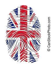 英國, 指紋