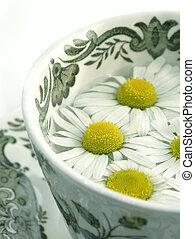 草の 茶, -, camomil