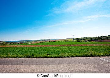 草地, 針對, the, 藍色的天空