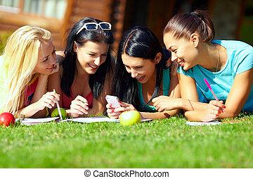 草坪, 团体, 网络, 聊天, 女孩, 学院, 社会, 绿色, 开心