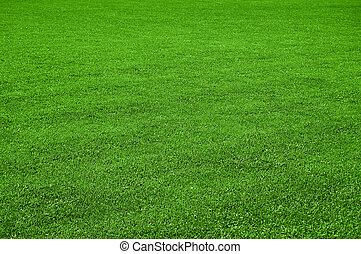 草坪, 结构