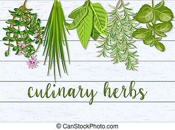 草木の栽培場, タイム, 農場, chives, 木製である, スカンジナビア人, 料理の, 新たに, herbs., ...