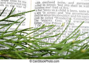 草木の栽培場, isaiah, クリスマス, 9:6, 経典