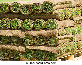 草皮, 草, 勞易斯勞萊斯