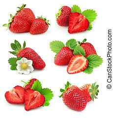 草莓, 彙整