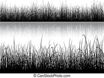 草, シルエット, 隔離された, 白