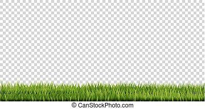 草, ボーダー