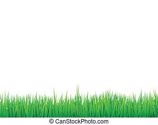 草, ボーダー, 背景