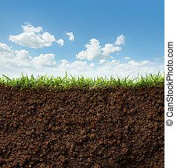 草, 以及, 土壤