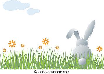 草, 矢量, bunny