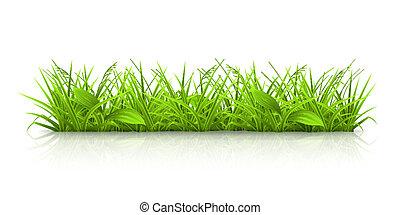 草, 矢量