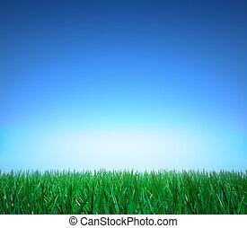 草, 緑, 晴れわたった空, landscape: