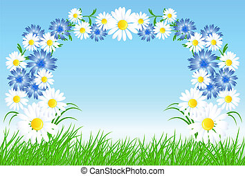 草, 緑, cornflowers, camomiles