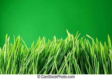 草, 背景, 性质