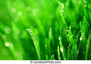 草, 自然, 背景