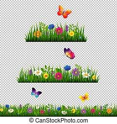 草, 花, ボーダー, 隔離された, コレクション