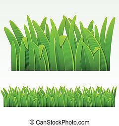 草, 邊框