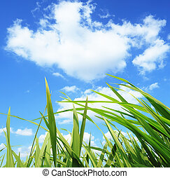 草, 開発, 環境, 緑, 保護, 概念