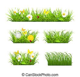 草, 集合